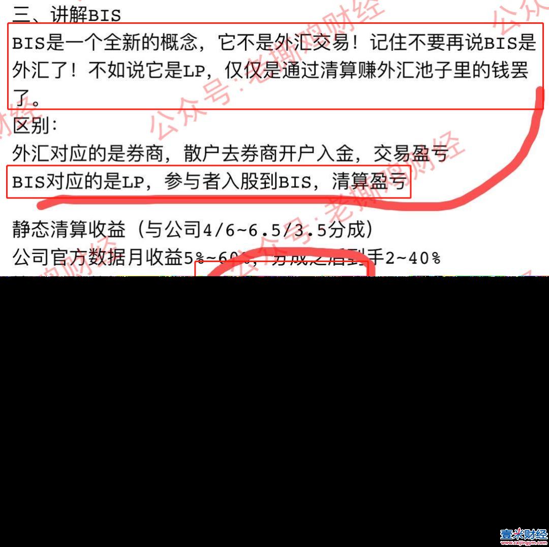 国际流量商骗局揭秘:外汇新型传销骗局,BIS股东共享流量清算计划怎么骗人的?图(3)