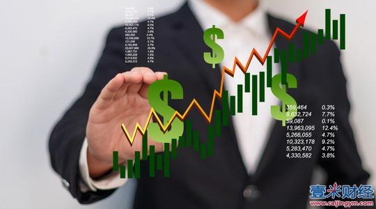 2020年股东权益比率怎么算?