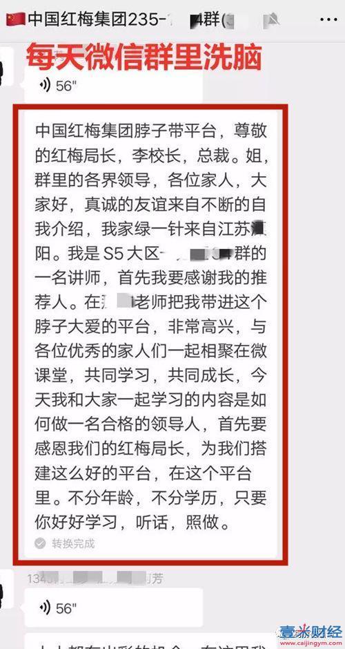 中国红梅集团2020最新消息: 白某龙犯诈骗罪,获刑5年,罚金10万元!退赔诈骗款20多万!图(5)